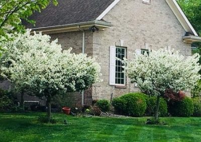lawn care monroe oh