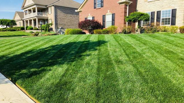 Lawn care service with mowing, edging, trimming