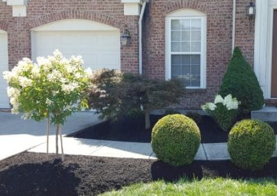 prune and mulch install mason oh